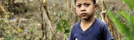 Se mueren los niños mexicanos