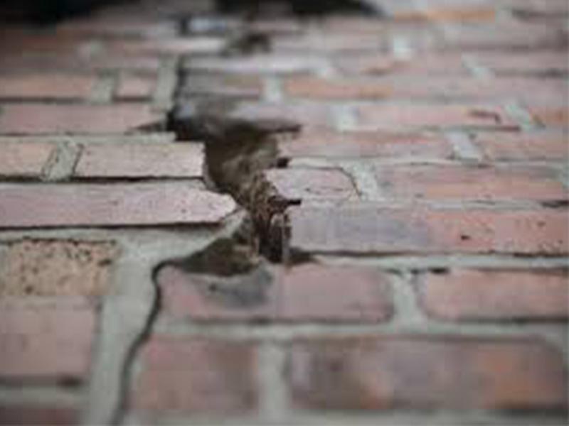 temblor1