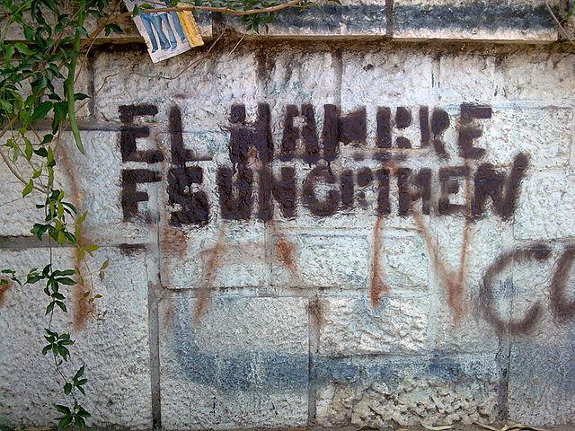 640px-pintada_en_contra_del_hambre_en_el_mundo_cordoba_argentina_2010-01-25