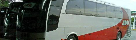 ¡En autobús no!