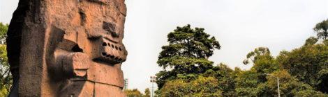 4 árboles famosos de la Ciudad de México