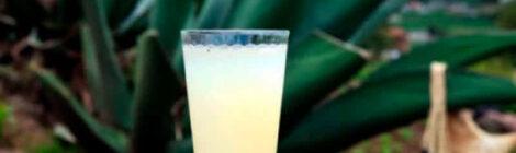El pulque, de bebida de los dioses a moda millenial